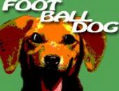 Amusant Football Chien 2