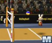 Bunnylimpics De Volley-Ball Adventure