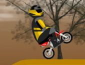 Mini Dirt Bike 33